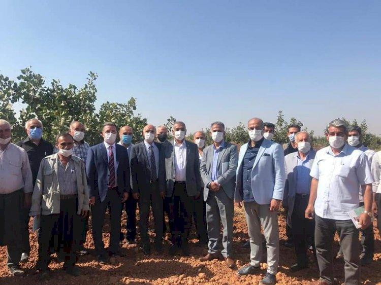 Uygulamalı Çiftçi Okulları toplantısı Nizip'te yapıldı