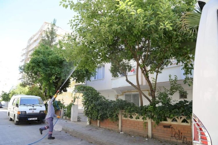 Nizip Belediyesi'nden sinek ve haşerelere karşı mücadele