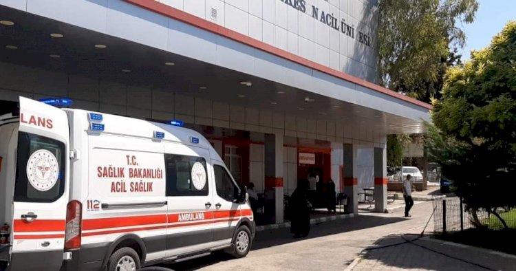 Nizip'te İnek hastanelik etti!